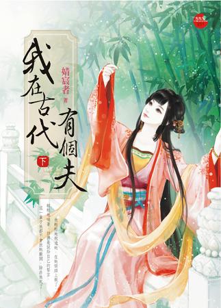 婧宸者小说《我在古代有个夫 下》封面图