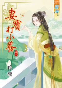 玲珑小说《V 妻宝打小养 卷二》封面图