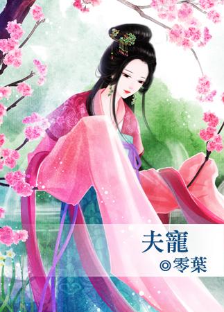 零叶小说《V 夫宠》封面图