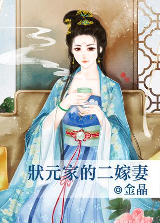 金晶小说《状元家的二嫁妻》封面图